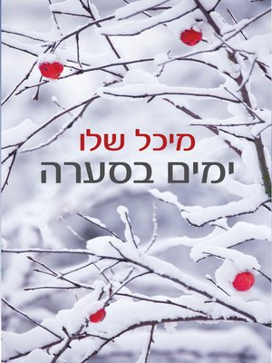 cover image of ימים בסערה (Snowstorm)