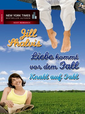 cover image of Knall auf Fall