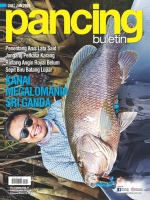 cover image of Pancing