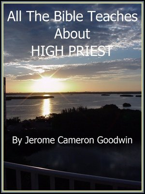 cover image of HIGH PRIEST
