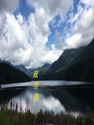 cover image of 眩雪剑