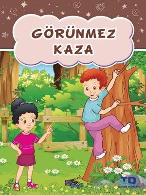 cover image of Görünmez Kaza