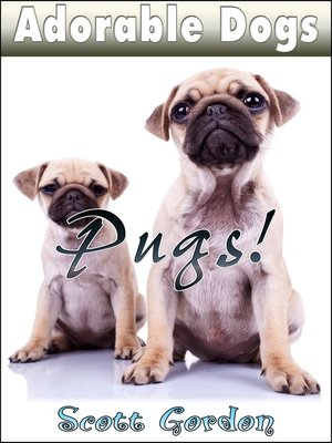 cover image of Pugs!