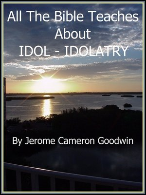 cover image of IDOL--IDOLATRY