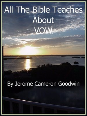 cover image of VOW