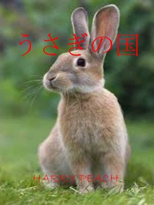 cover image of うさぎの国