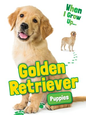 cover image of Golden Retriever Puppies