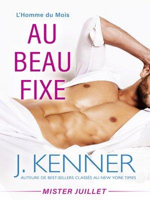 cover image of Au beau fixe