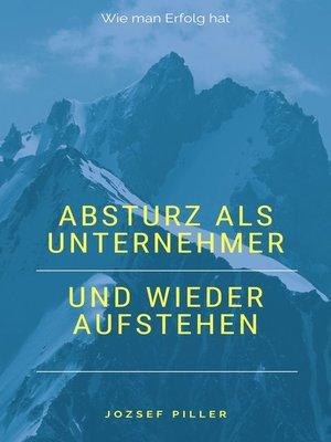 cover image of Absturz als Unternehmer und wieder aufstehen
