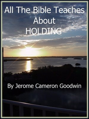 cover image of HOLDING