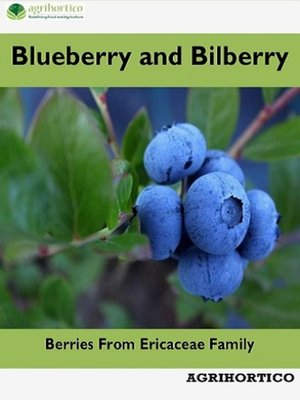 cover image of Blueberry and Bilberry