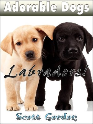 cover image of Labradors!