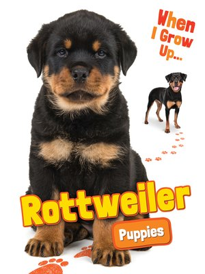 cover image of Rottweiler Puppies