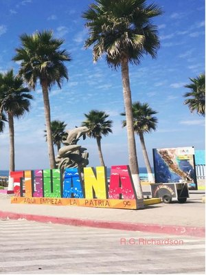 cover image of Tijuana Interactive City Guide
