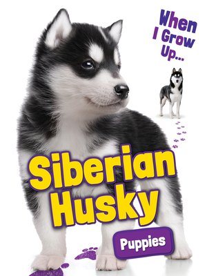 cover image of Siberian Husky Puppies