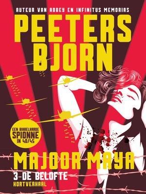 cover image of De Belofte