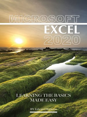 cover image of Microsoft Excel 2020