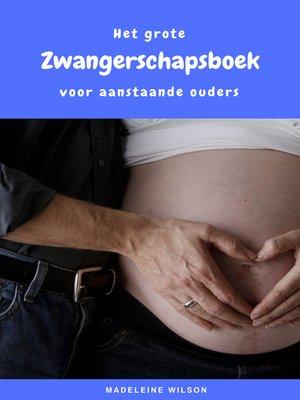 cover image of Het grote Zwangerschapsboek voor aanstaande ouders