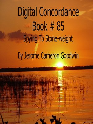 cover image of Spying to Stone-weight--Digital Concordance Book 85
