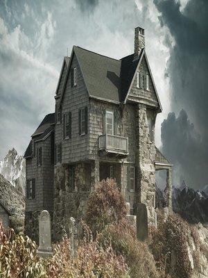 cover image of Das Haus der Wünsche