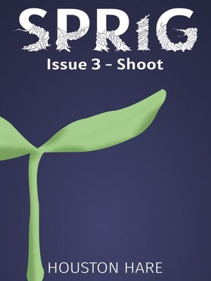 cover image of Issue 3--Shoot