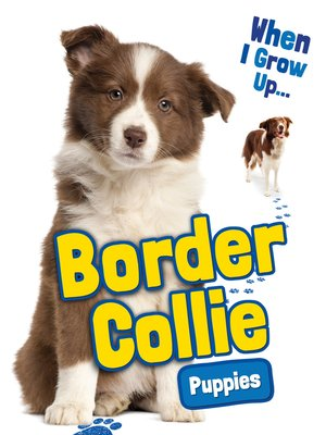 cover image of Border Collie Puppies