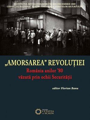 "cover image of ""AMORSAREA"" REVOLUTIEI"