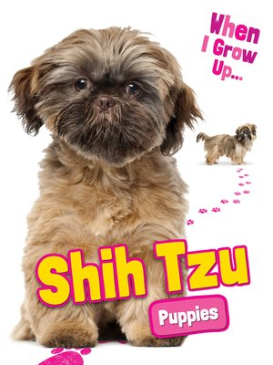 cover image of Shih Tzu Puppies