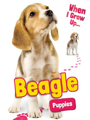 cover image of Beagle Puppies