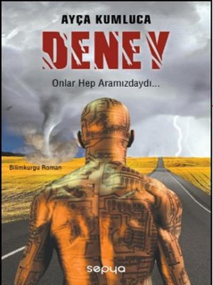 cover image of DENEY