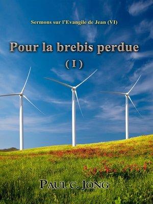 cover image of Pour la brebis perdue ( I )--Sermons sur l'Evangile de Jean (VI)