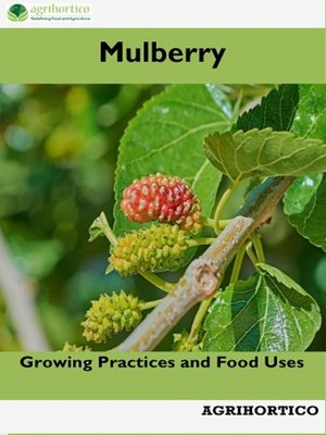 cover image of Mulberry