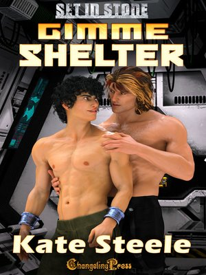 cover image of Gimme Shelter