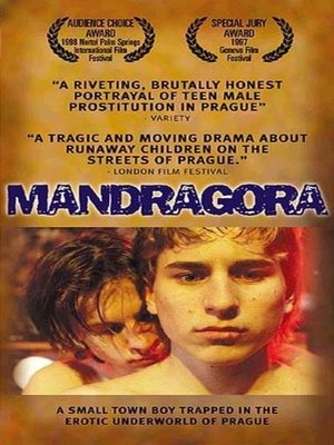 cover image of Mandragora