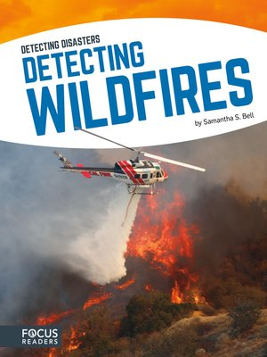cover image of Detecting Wildfires