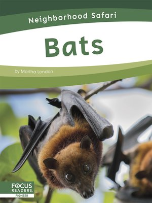 cover image of Bats