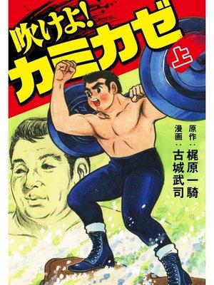 cover image of 吹けよ!カミカゼ: 上