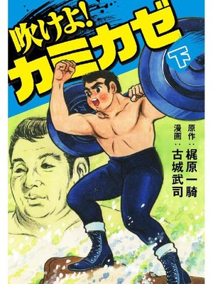 cover image of 吹けよ!カミカゼ: 下