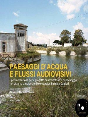 cover image of Paesaggi d'acqua e flussi audiovisivi