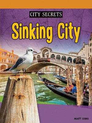 cover image of Sinking City