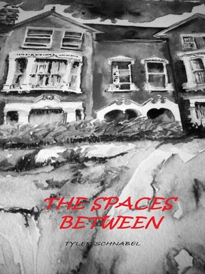 cover image of The Spaces Between