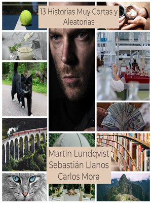 cover image of 13 Historias Muy Cortas y Aleatorias