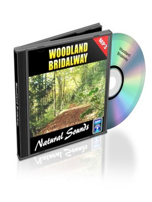 cover image of Woodland Bridal Way--Relaxation Music and Sounds