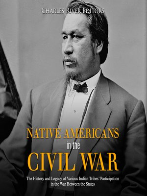 cover image of Native Americans in the Civil War