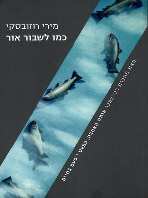 cover image of כמו לשבור אור - Like breaking the light