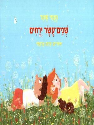 cover image of שנים עשר ירחים - Twelve Months