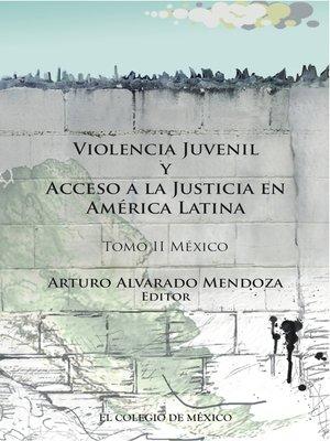 cover image of Violencia juvenil y acceso a la justicia, Tomo 2