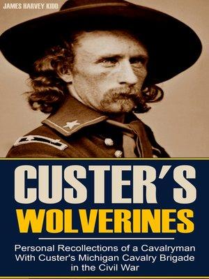 cover image of Custer's Michigan Cavalry Brigade in the Civil War