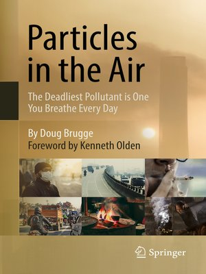 cover image of Particles in the Air