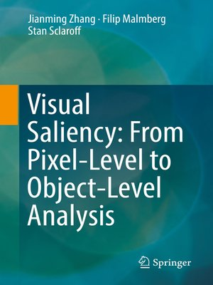 cover image of Visual Saliency